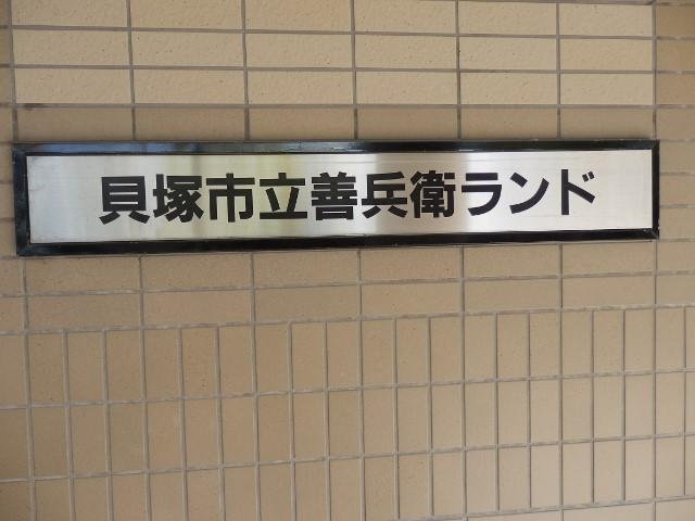 k3 (640x480).jpg