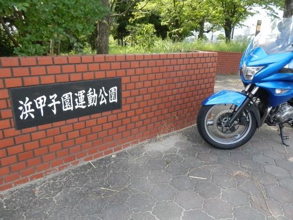 k9 (640x480).jpg