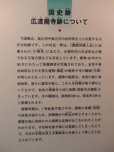 o18 (480x640).jpg